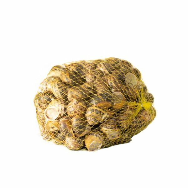 comprar caracoles de palencia